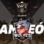 Wolves Crew se llevó la Gran Final del Casino Black Esports Series Valorant
